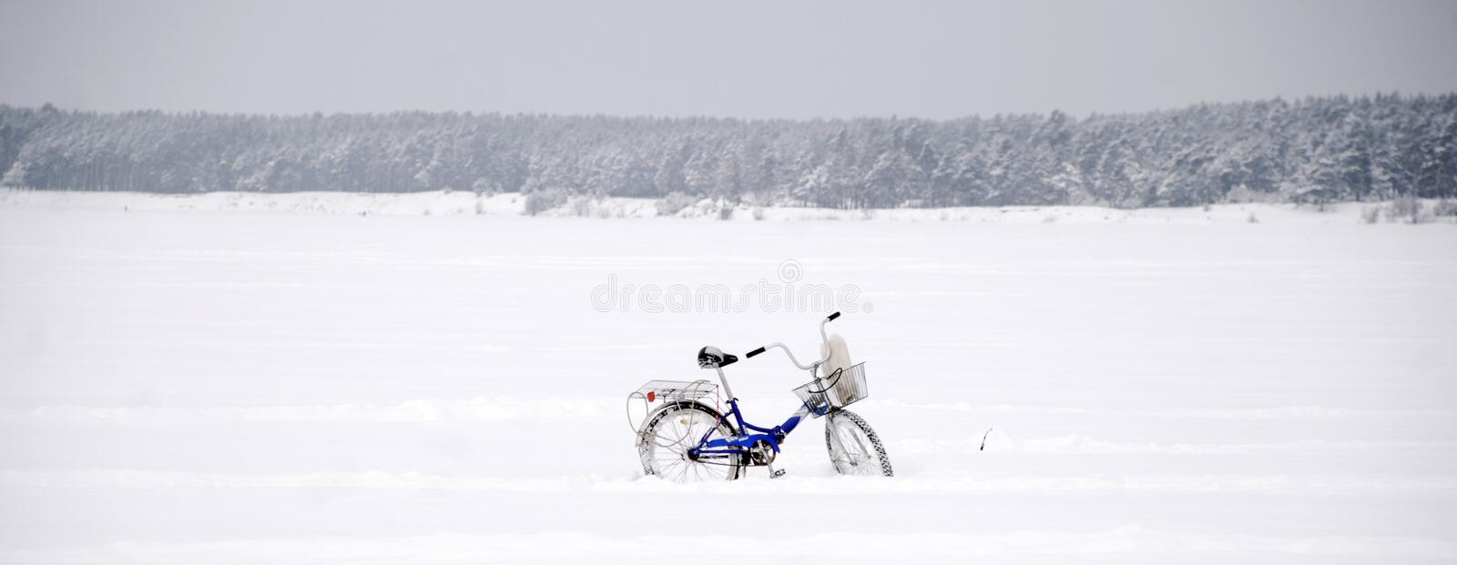 Bicycle. Absurd scene: single bicycle amongst winter margin stock image