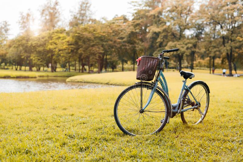 Bicycle in autumn park. Sport and activity concept. Relax and activity concept. Leisure and nature theme. Yellow tone theme royalty free stock photo
