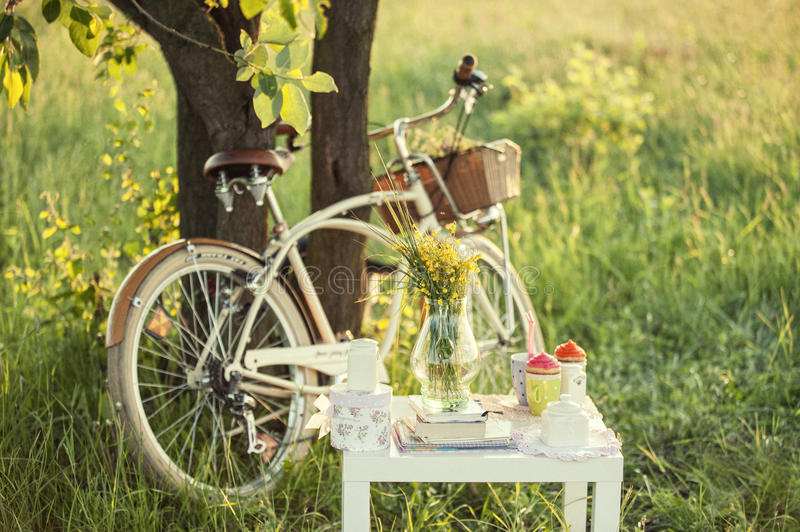 Bicycle with basket and decoration for photo session. Bicycle with picnic set and decoration in shadow under the green tree in summer day stock photography