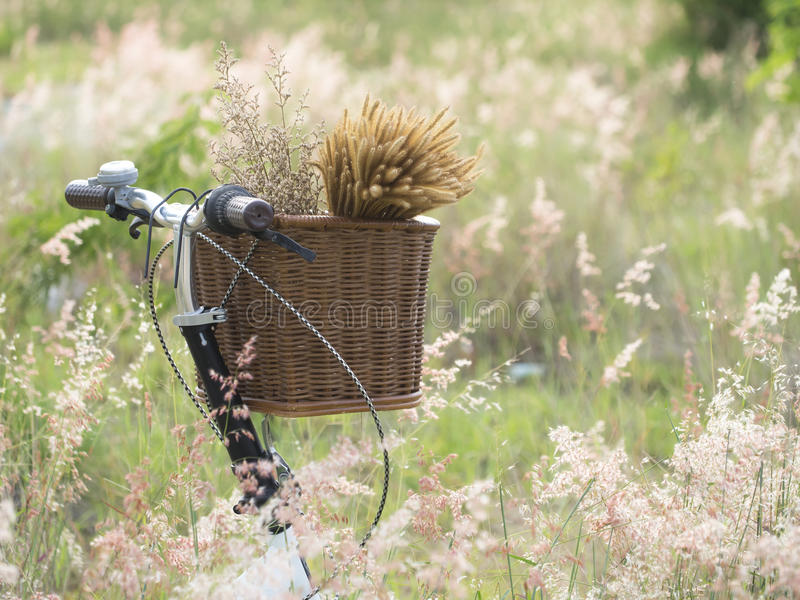 Bicycle with basket of flowers in meadow royalty free stock photo