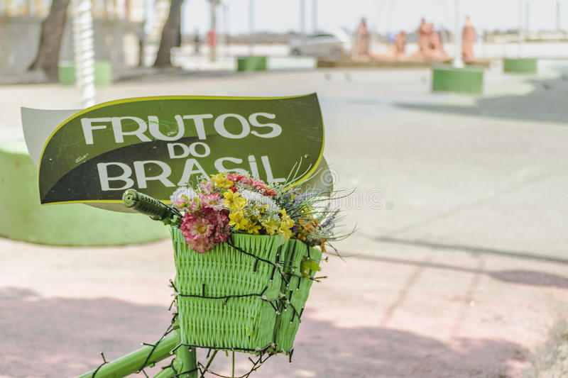 Bicycle Basket with Flowers Recife Brazil. A bicycle basket with flowers located in Marco Zero zone in Recife Brazil stock photo
