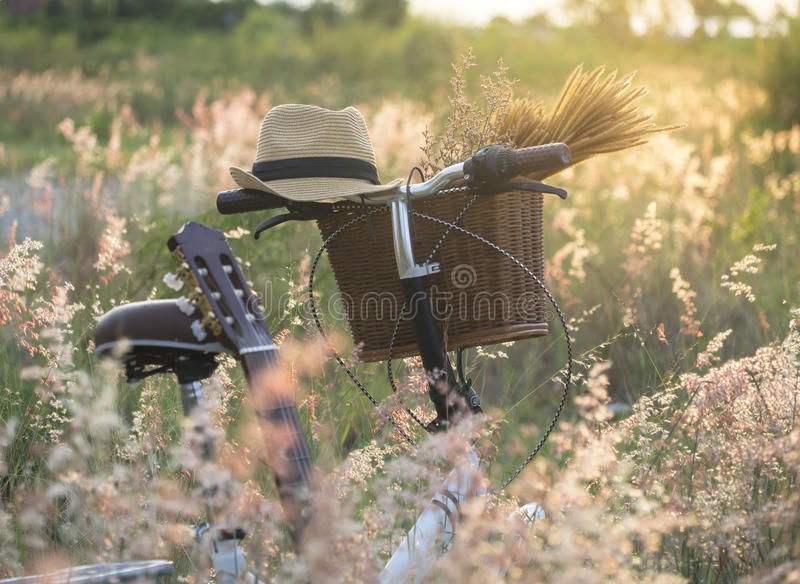 Bicycle with basket and guita of flowers in meadow, royalty free stock images