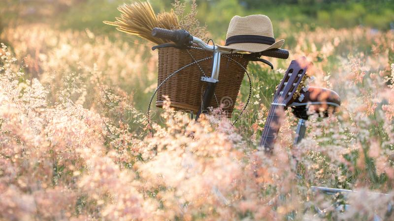 Bicycle with basket and guitar of flowers in meadow, royalty free stock photography