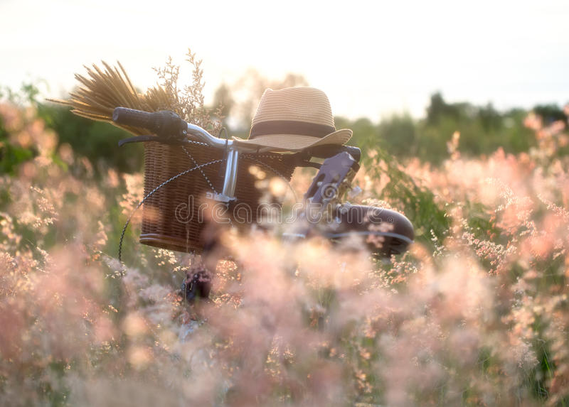 Bicycle with basket and guitar of flowers in meadow stock photography