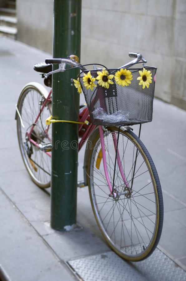 Download Bicycle chained to pole stock photo. Image of urban, flowers - 18617584