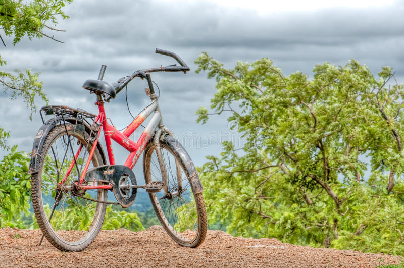 Bicycle among clouds and trees royalty free stock image