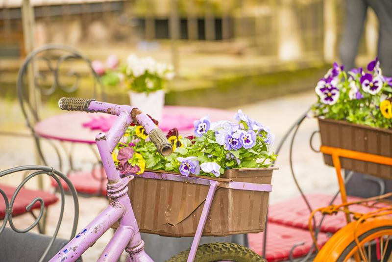 Bicycle with flowers at a street cafe royalty free stock image