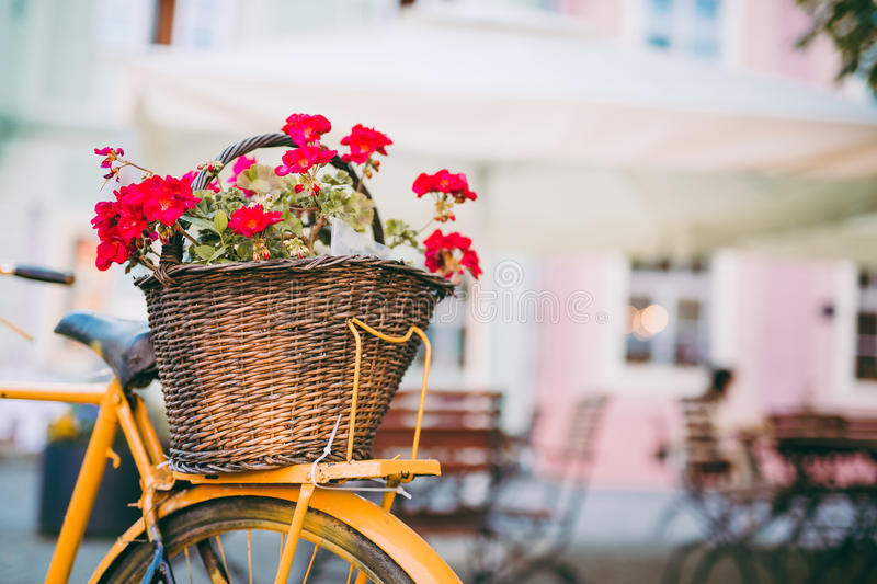 Bicycle with flowers royalty free stock photography
