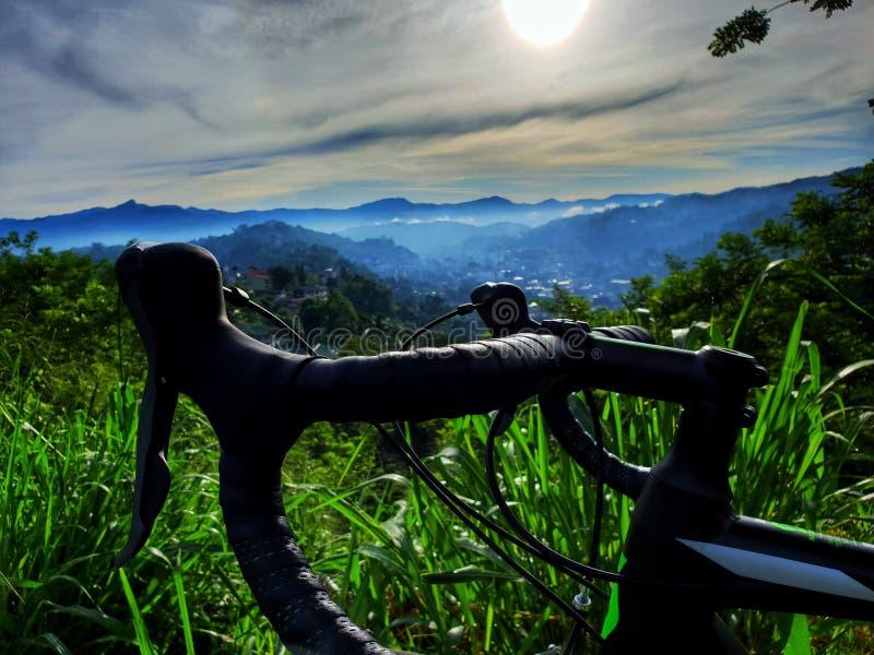 Bicycle handle among the greenery stock photography