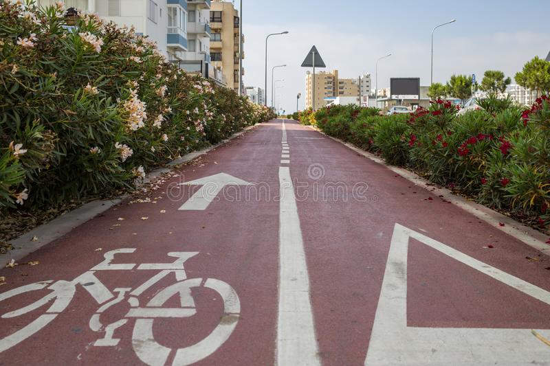 Bicycle lane, red asphalt with white arrow for bikes. Cityscape and sky background. Bicycle lane surrounded by red and white flowers, red asphalt with white royalty free stock image