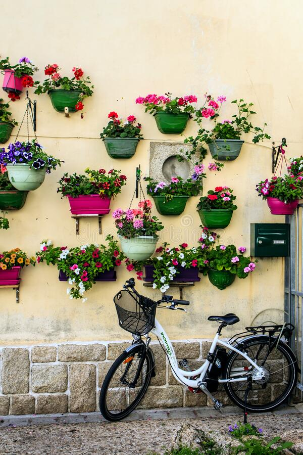 Free Bicycle Parked Against A Bright Wall With Pots Of Flowers Royalty Free Stock Photos - 174866348
