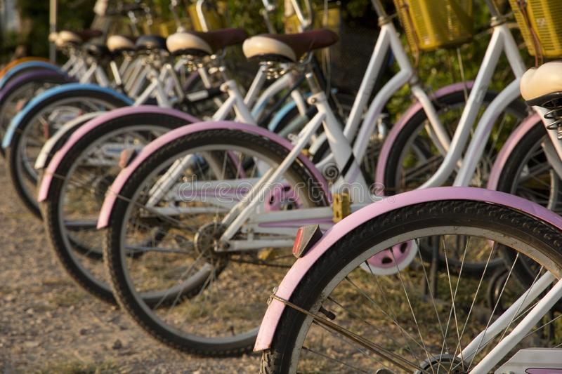 Bicycle parking near the public park, Bicycles stand in a row on a parking for rent stock photo