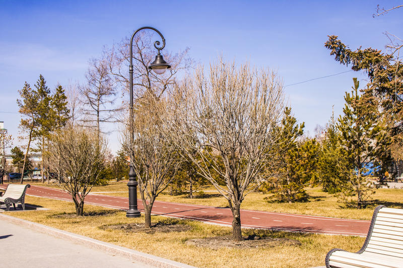 Bicycle path in the city park in the spring royalty free stock photo