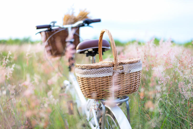 Bicycle retro with basket picnic and guitar of flowers in meadow. stock photos