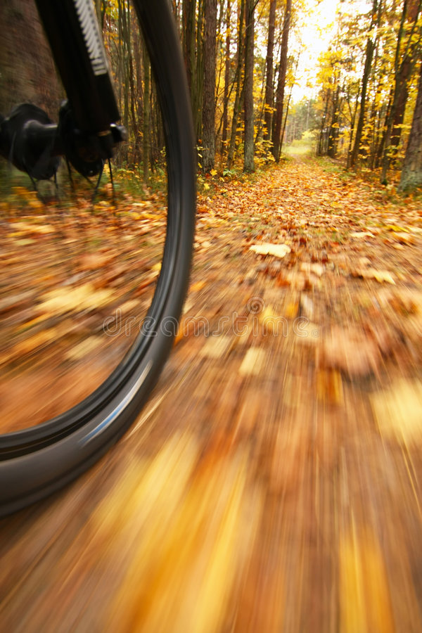 Download Bicycle Riding, Low Angle Motion Blur Stock Photo - Image: 8449610
