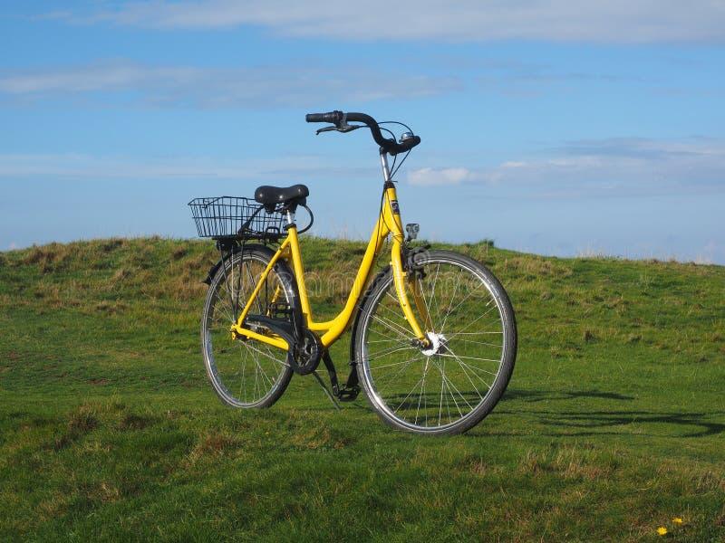 Bicycle, Road Bicycle, Land Vehicle, Yellow stock image
