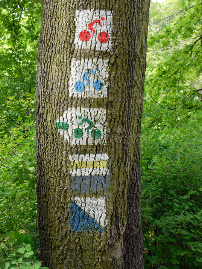Download Bicycle route signs stock image. Image of tree, indication - 9585525