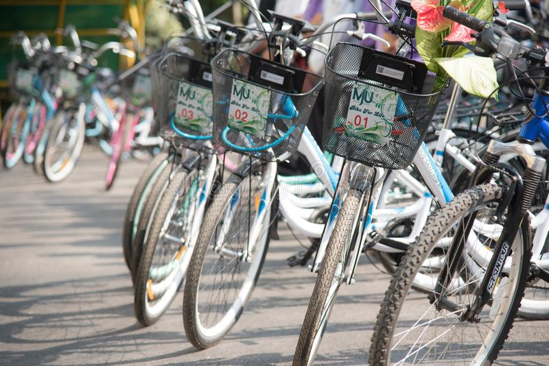 Bicycle rows of new bikes stock image