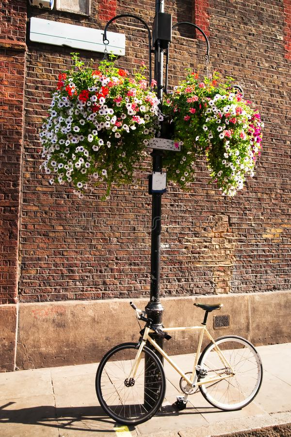 A bicycle and some flowers stock images
