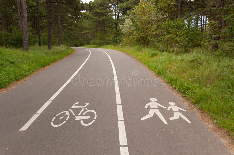 Bicycle and walking lane in forest