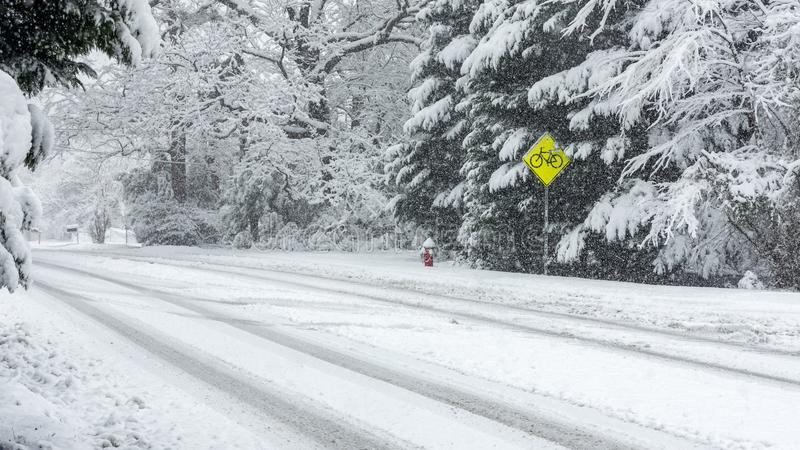 Bicycle warning Street Signs on Snow covered road. With trees and tracks in the road royalty free stock photography