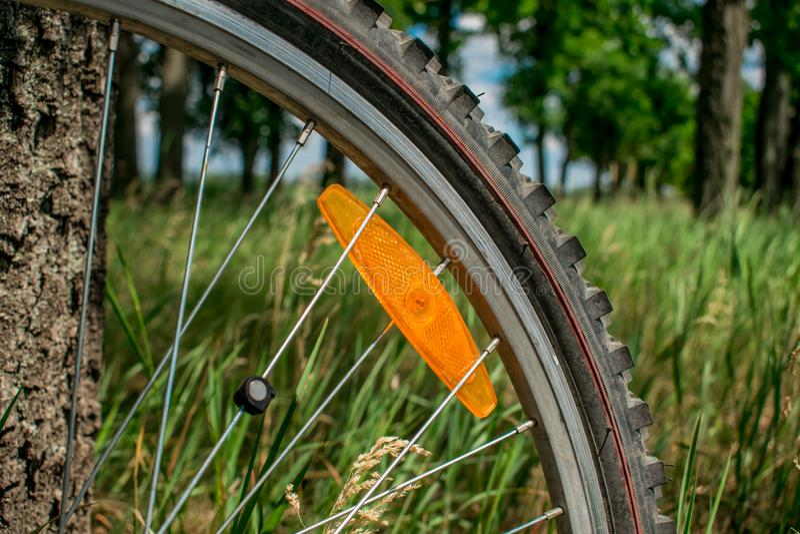 Bicycle wheel with orange spoke reflector royalty free stock photo