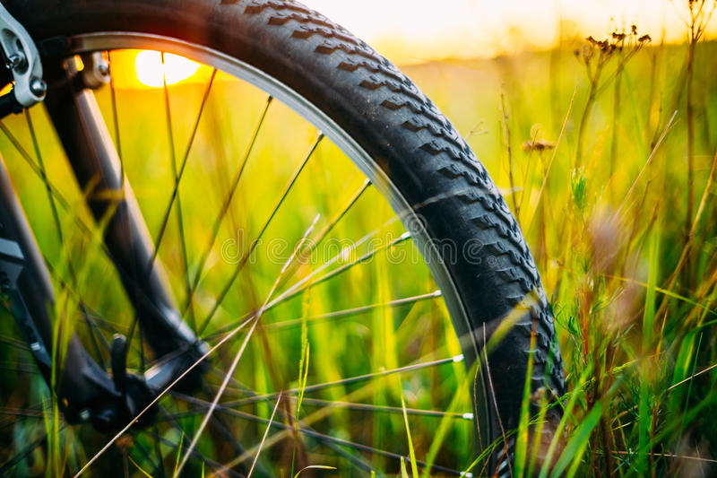 Bicycle Wheel In The Summer Green Grass Meadow. Field. Close Up Detail stock photography