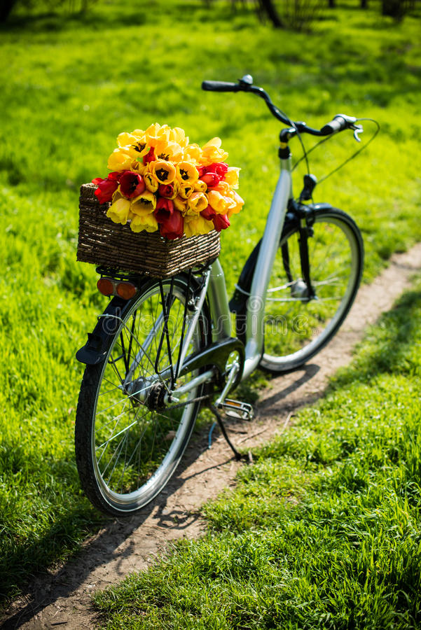 Bicycle with a wicker basket and spring flowers royalty free stock images