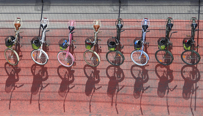 Download Bicycles stock photo. Image of bicycles, option, bike - 21161300