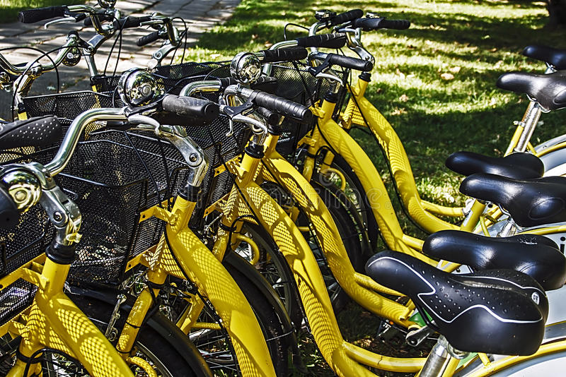 Download Bicycles.Detail stock image. Image of outdoors, metal - 26063505