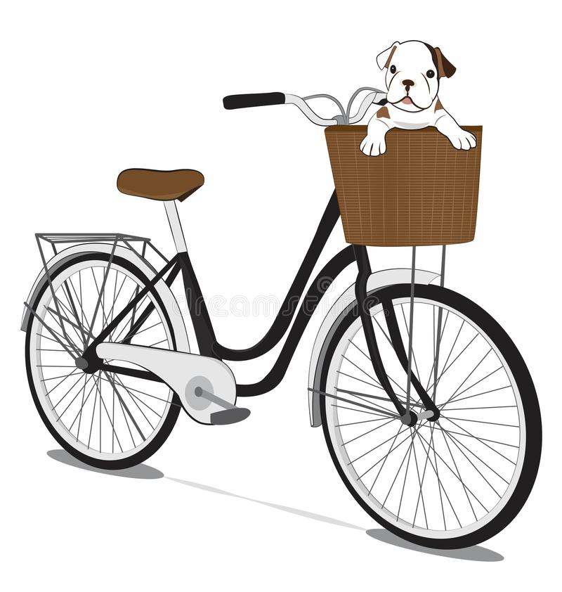 Bicycles and french bulldog Puppy. On white background royalty free illustration