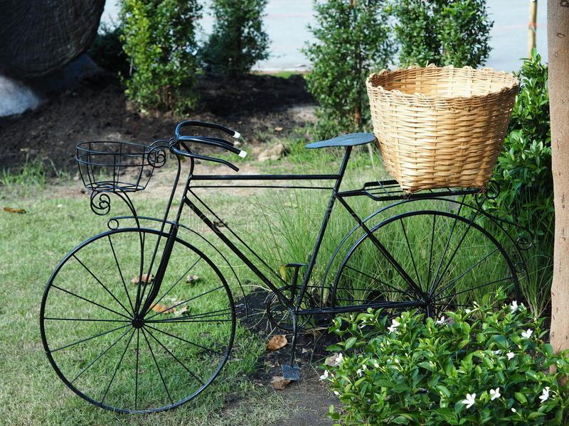 Bicycles in the park outdoor stock photo