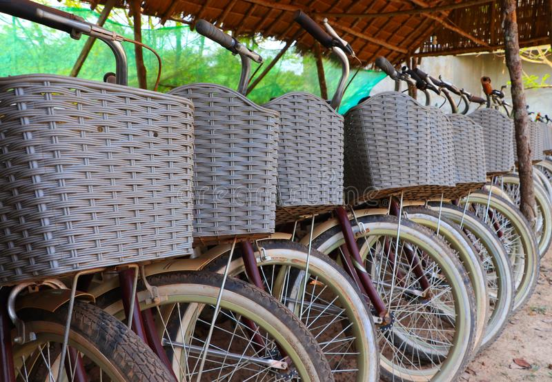 Bicycles parking under the bamboo shed ready for service royalty free stock photos