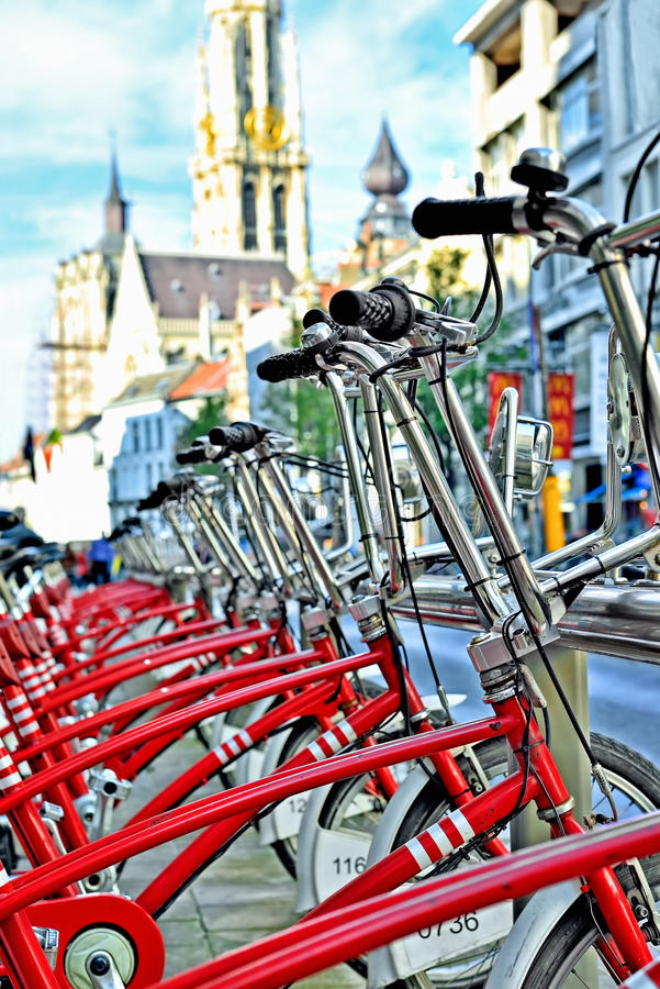 Bicycles for rent royalty free stock photos