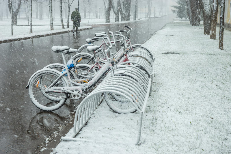 Bicycles smoothly covered with fresh snow after weather phenomena - snowfall in late April near Moscow. Scenic view of a row of bicycles smoothly covered with stock photo