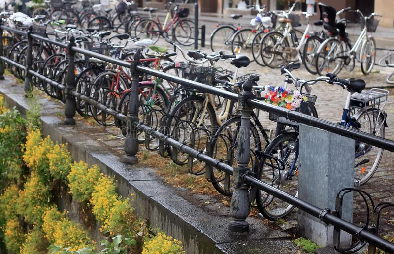 Bicycles in Uppsala. Bicycles in the rain, over the canal of Uppsala. Bikes. Wet saddles stock image
