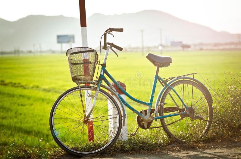 Bicyclette photos stock