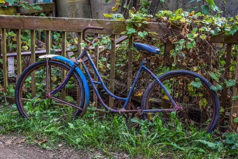 Bicyclette antique bleue et pourpre image stock