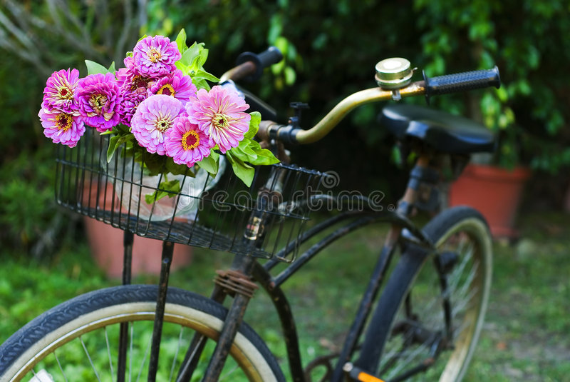 Bicyclette avec des fleurs photo stock