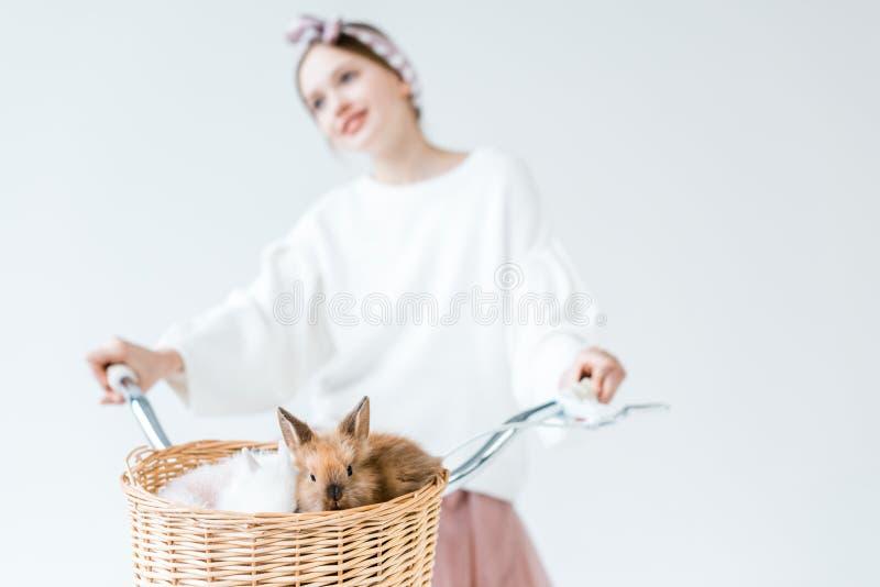 Bicyclette d'équitation d'adolescente avec les lapins velus mignons dans le panier photo stock