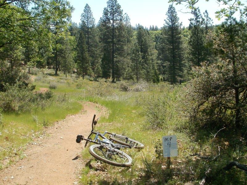 bicyclette dans les bois image libre de droits