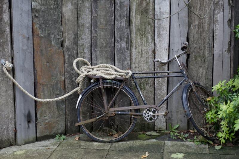 Bicyclette de cru attachée avec la corde montrant le vieux vélo contre la barrière en bois photo libre de droits