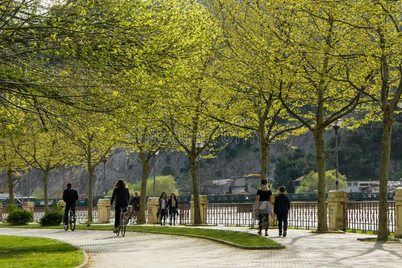 Bicyclette de monte de personnes en parc de ville photos libres de droits