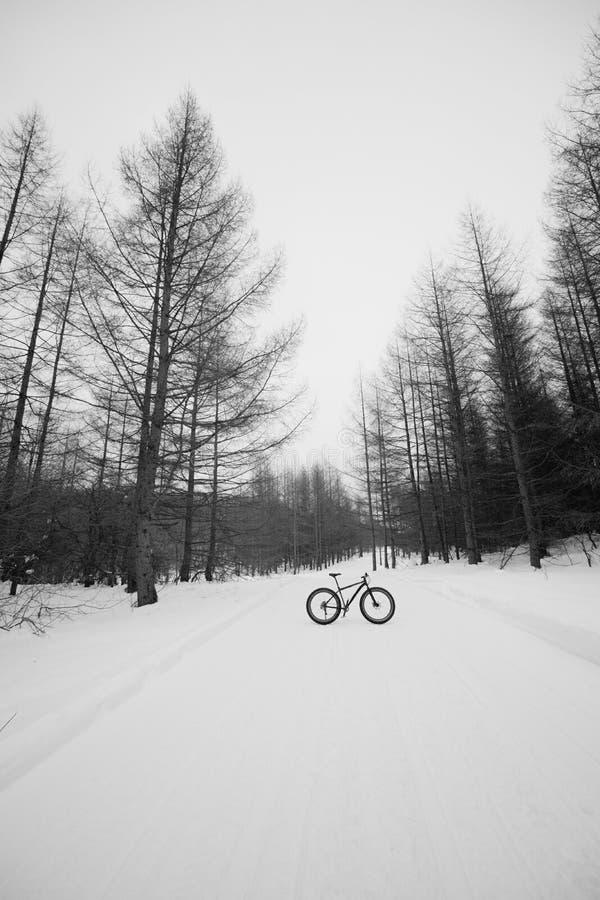Bicyclette de neige image libre de droits