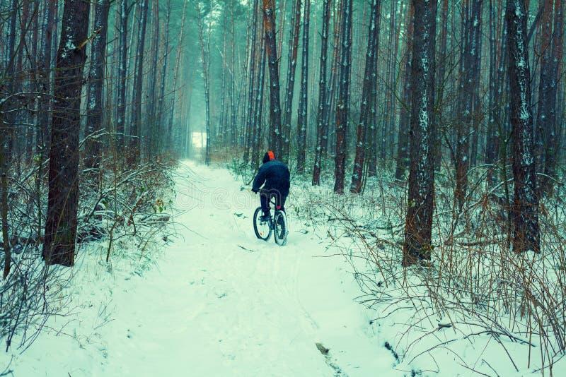 Bicyclette de tour d'homme dans neigeux dans la forêt d'hiver image stock