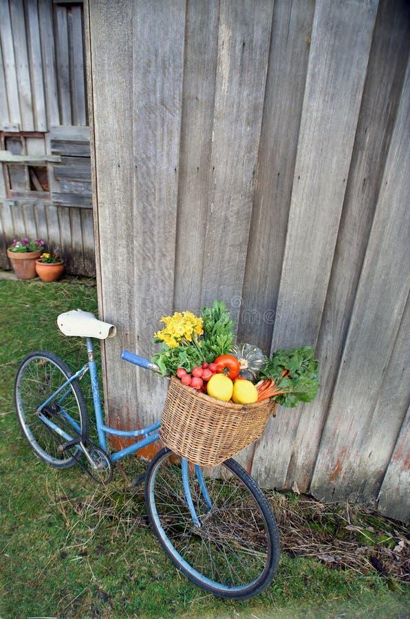 Bicyclette et légumes image stock