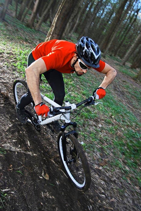 Bicyclette faisante du vélo de Mtb photos stock