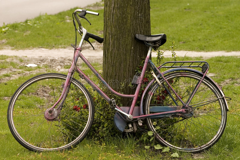 Download Bicyclette fanée photo stock. Image du weathered, conduite - 731784