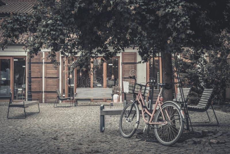 Bicyclette rose de vintage sous l'arbre photos stock