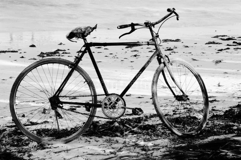 Bicyclette sur la plage, Zanzibar photo libre de droits